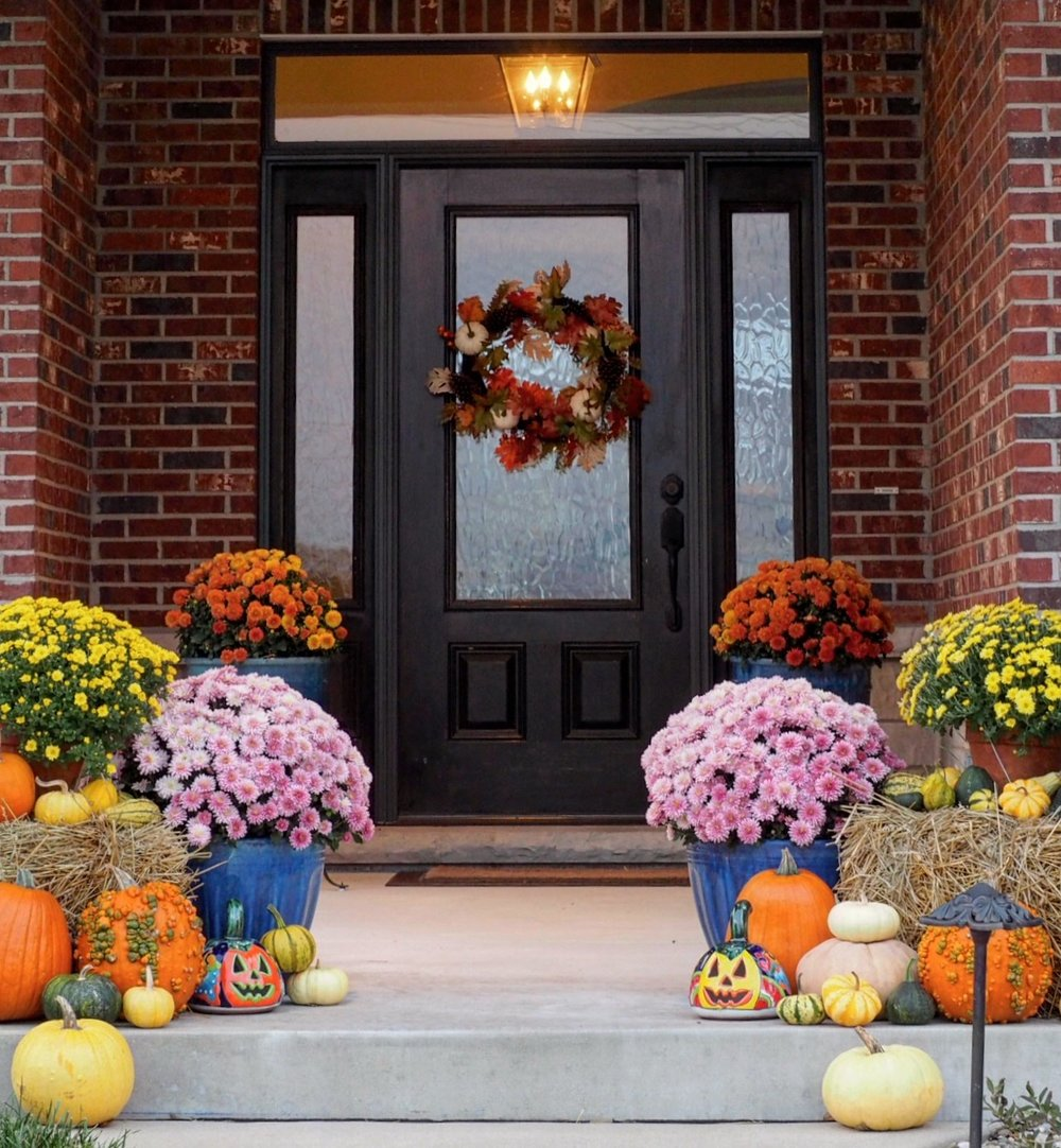 Our front porch dressed for fall. I didn't think the mums were ever going to open this year but they finally have and we will now have a beautiful entry to greet our guests on Thanksgiving.