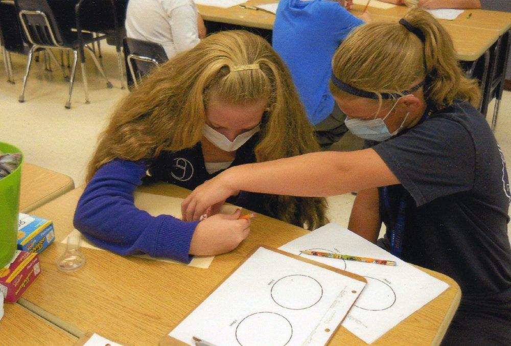 Hillcrest students investigating bacteria