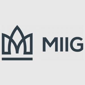 NEW MIG.jpg