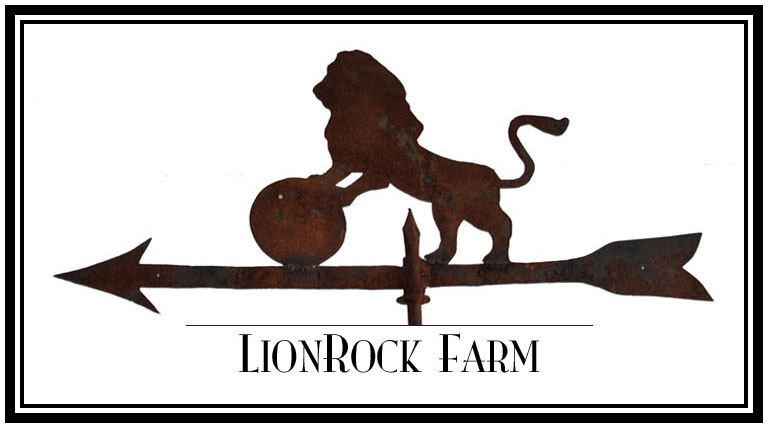 Lion Rock Farm Events