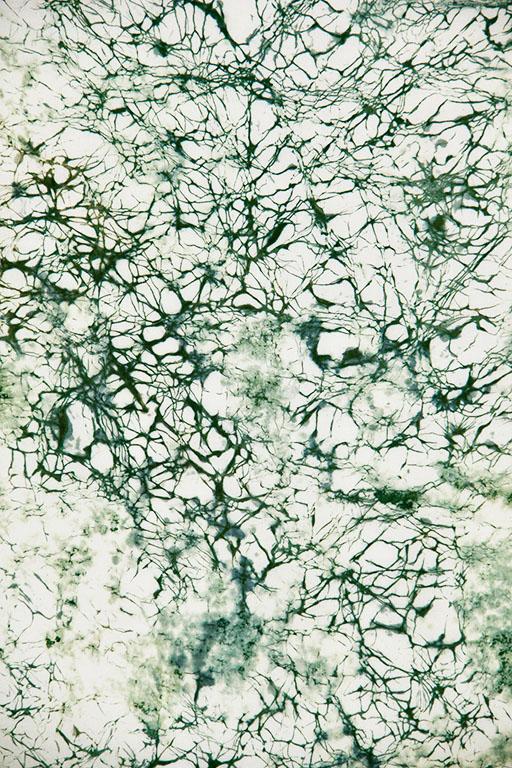 Green Crackle Resist Dye