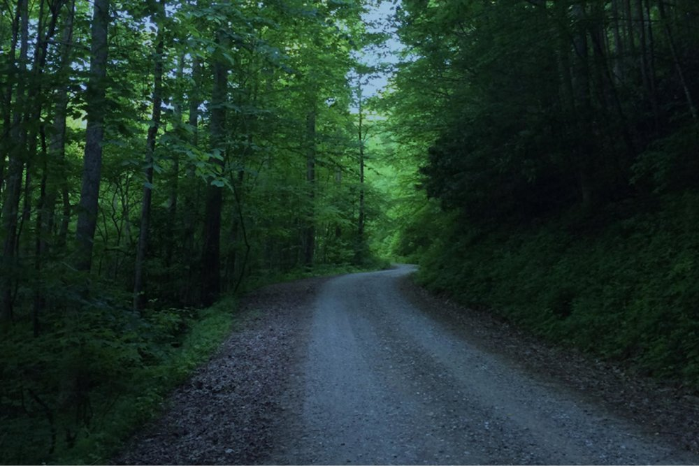 A modern road along The Trail of Tears in Cherokee National Forest
