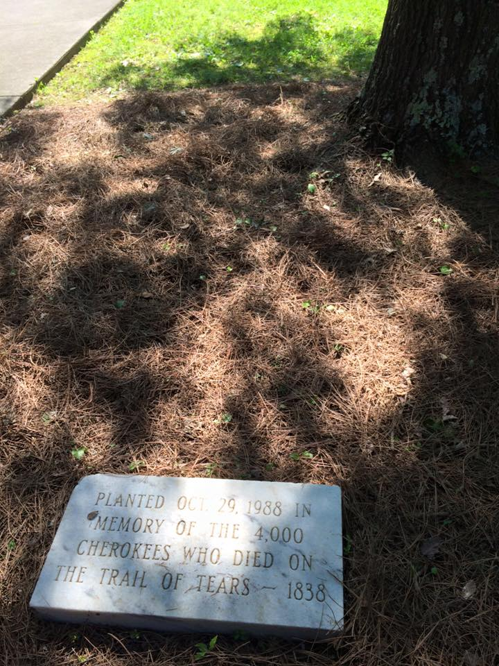 "A plaque marking a tree ""Planted on October 29, 1988 in memory of the 4,000 Cherokees who died on the Trail of Tears -- 1838."""