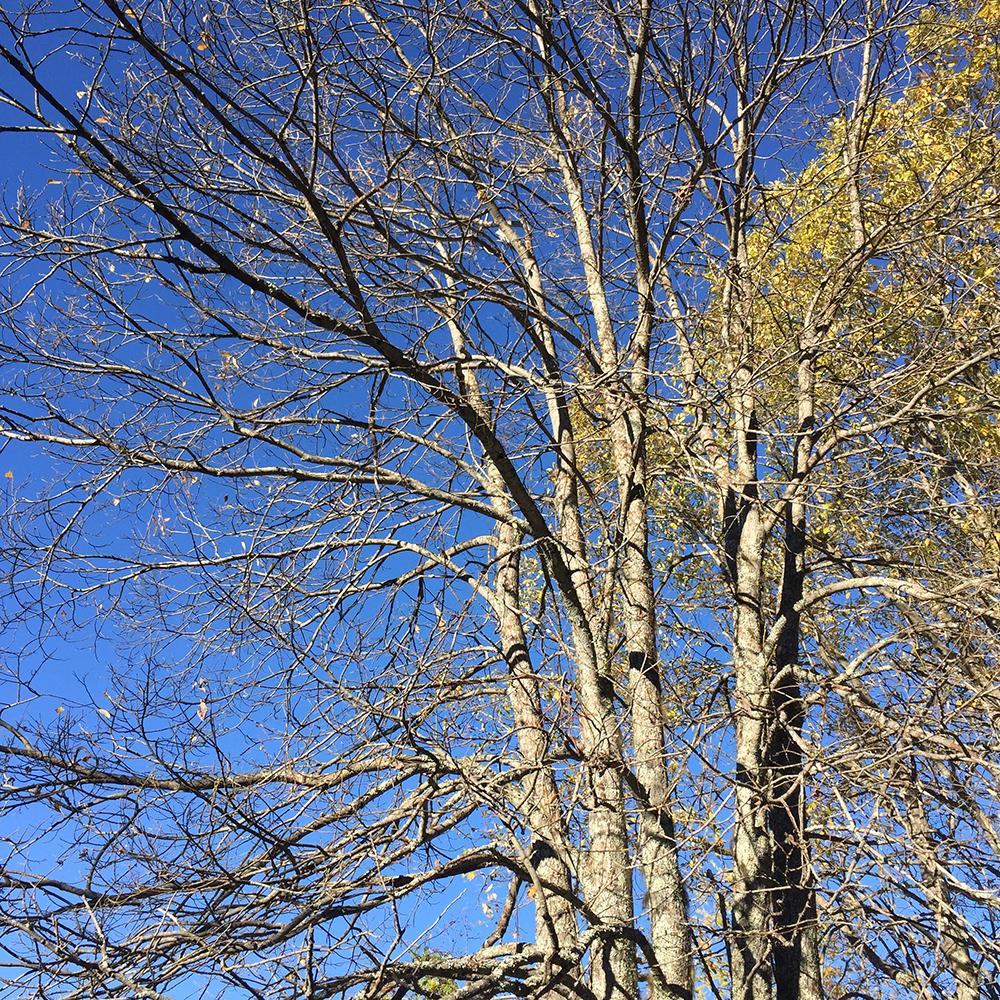 spring_Hiking.jpg