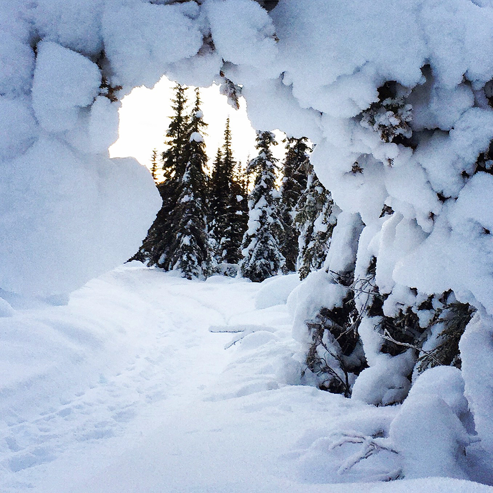 vinter_ronnberget.jpg