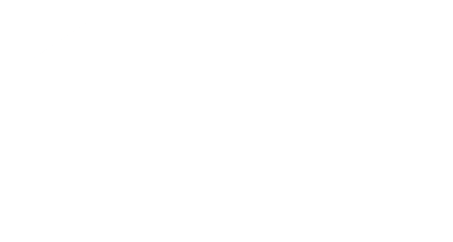 The Shaw Team