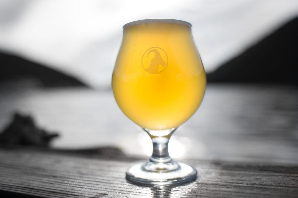 TULIP GLASS - $5-7