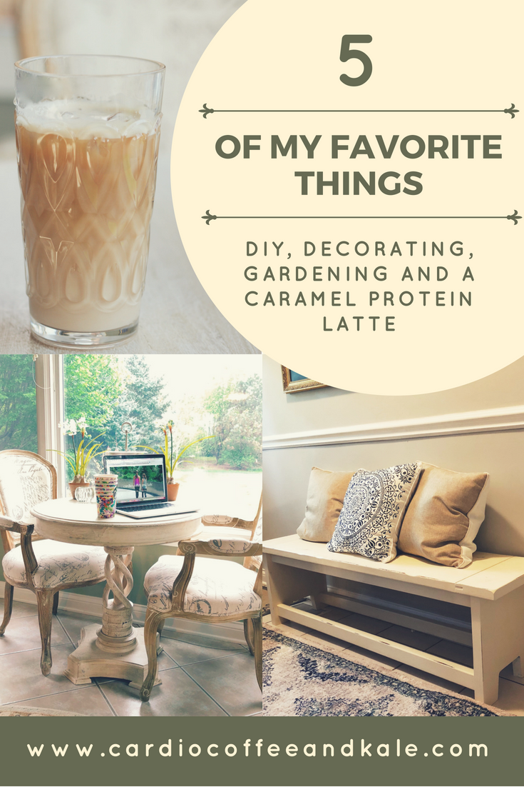 5 of my favorite things!  DIY, Decorating, Gardening, and a Protein Caramel Latte!  Check out my Friday Favorites 114!