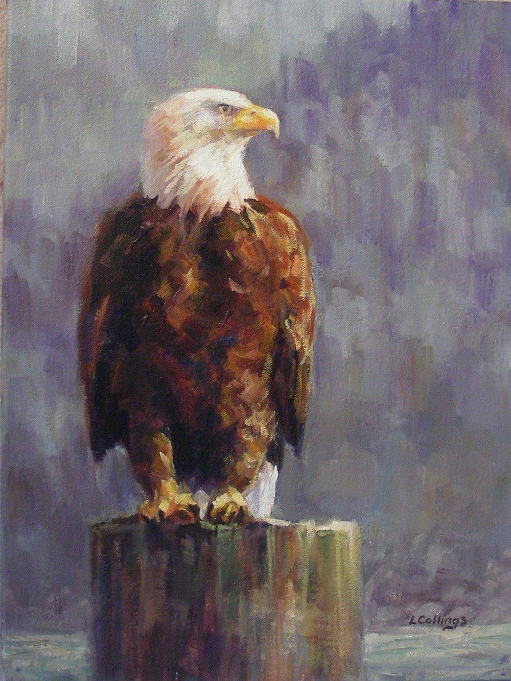 "2 - Alert - 16 x 12"", oil on canvas, $330-"