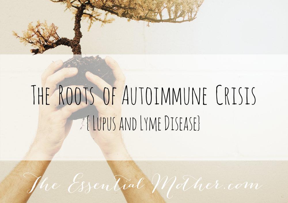 autoimmune roots.jpg