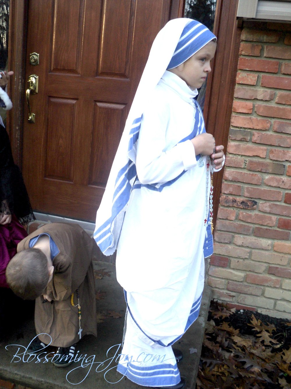 mother+teresa+costume+3.jpg