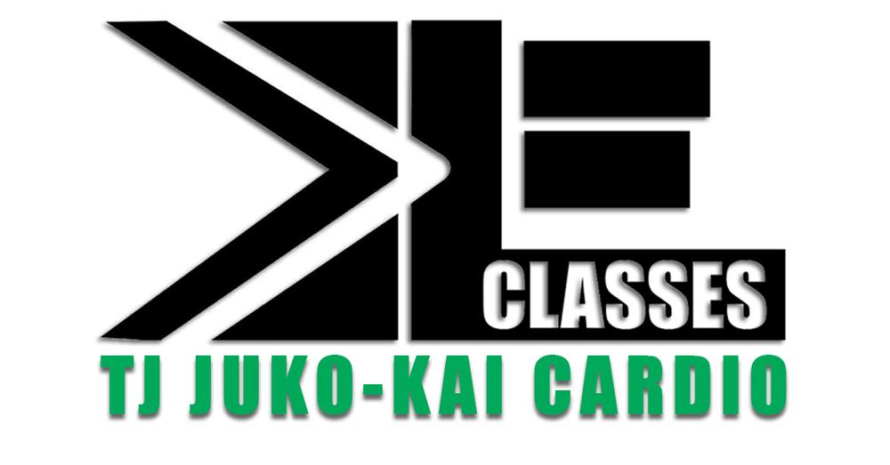 EveryDay Fitness Redding CA Juko-Kai Cardio.jpg