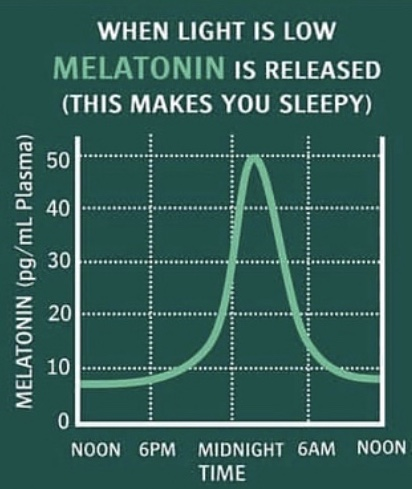 Image 3 - The Melatonin response to light source throughout the day. (Source: Science for Sport)