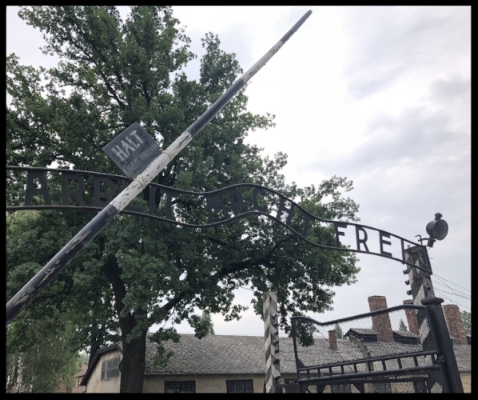 """Entrance into Auschwitz I. The sign translates to """"Work Will Set You Free"""" a common lie told by many concentration camps."""