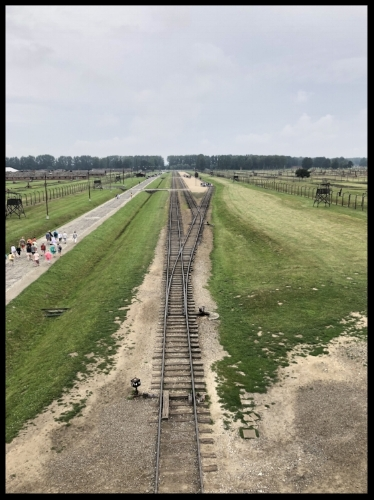 Railroad tracks leading to the center of Auschwitz II.
