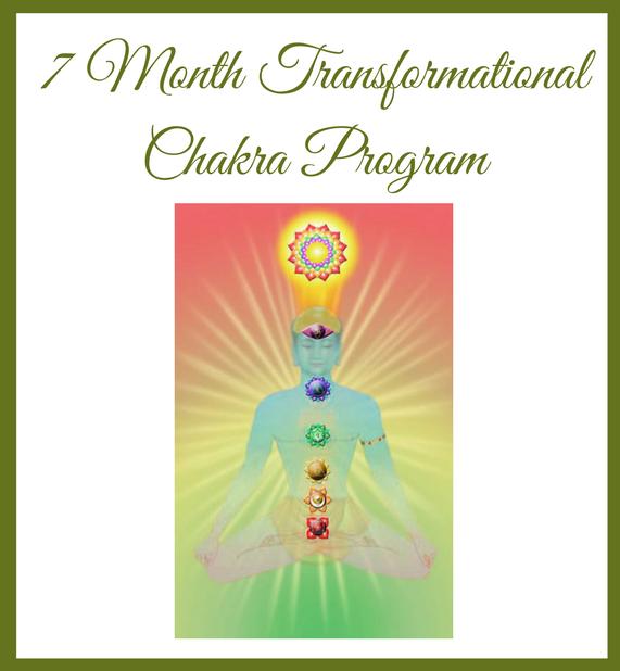 7 Month Transformational Program Image