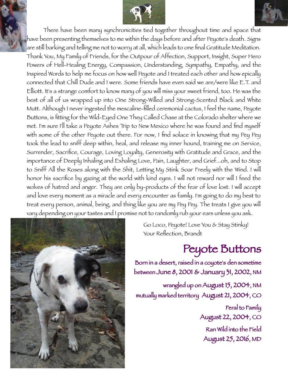So My Dog Died pg 2.jpg