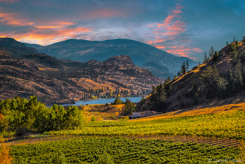 okanagan valley image 1.jpg
