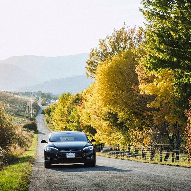November 29: No snow and green grass here in the #Okanagan. 🍁 #Route97 #ExploreBC #ExploreVernon #ExploreKelowna #Tesla #TeslaLife #KeepExploring