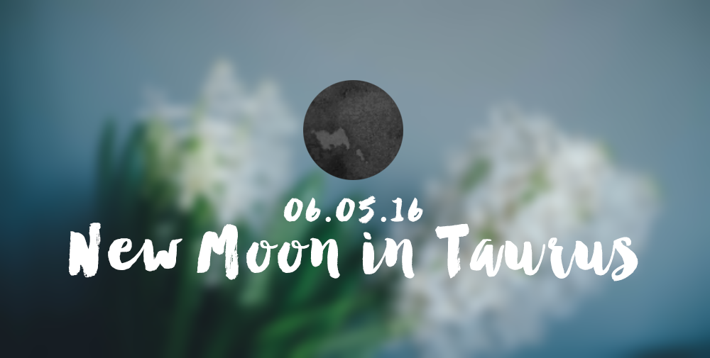 new moon taurus may 2016 flowers