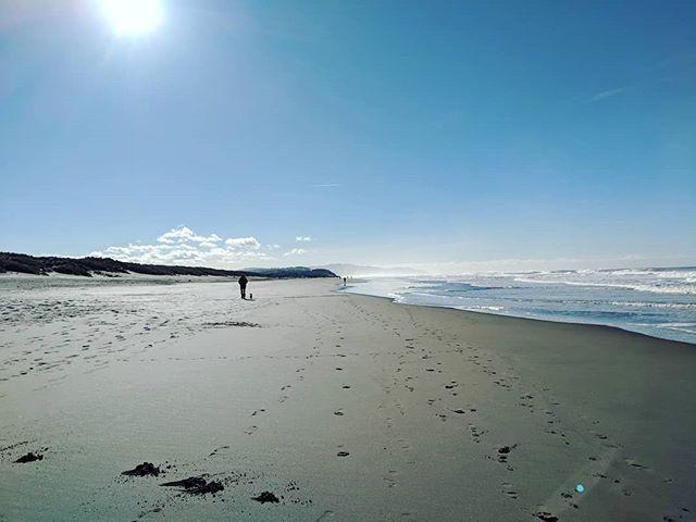 Morning Ocean Beach