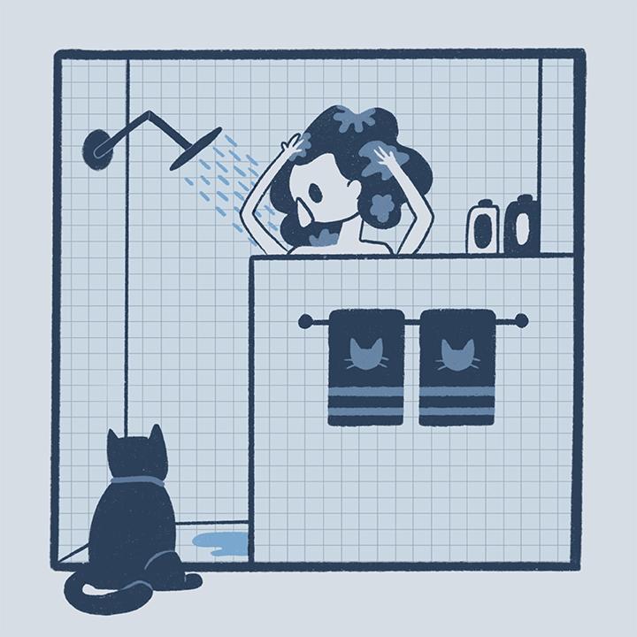 cat shower72.jpg