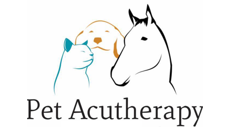 Pet Acupuncture Australia