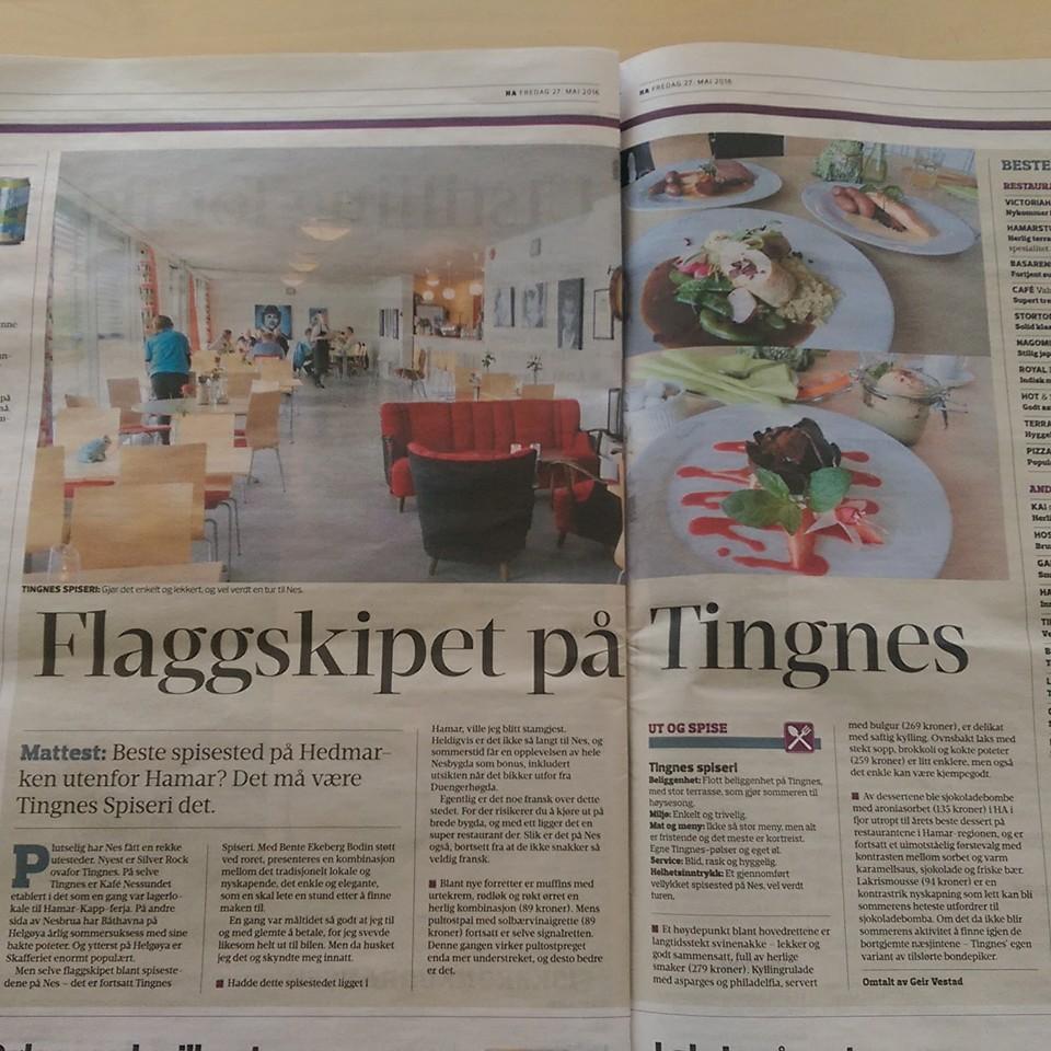 Gode skussmål fra Geir Vestad i Hamar Arbeiderblad i mai 2016.