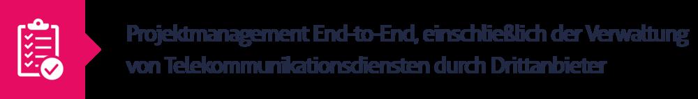 5.Projektmanagement End-to-End, einschließlich der Verwaltung von Telekommunikationsdiensten durch Drittanbieter