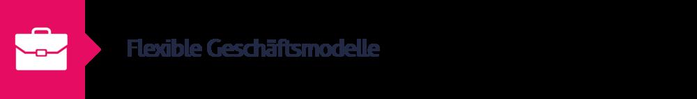 10.Flexible Geschäftsmodelle