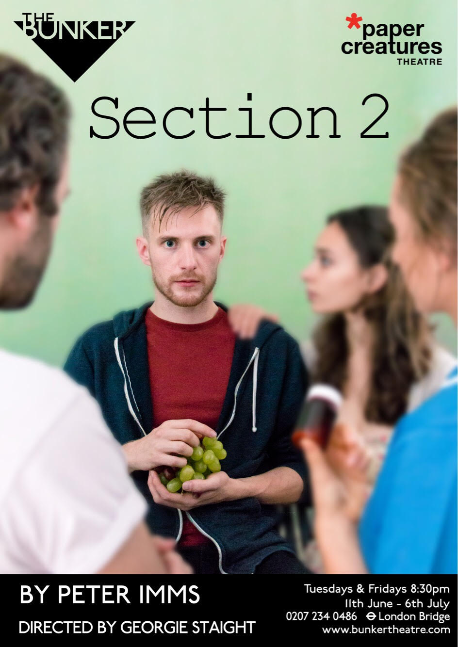 Section 2 Flyer.jpg