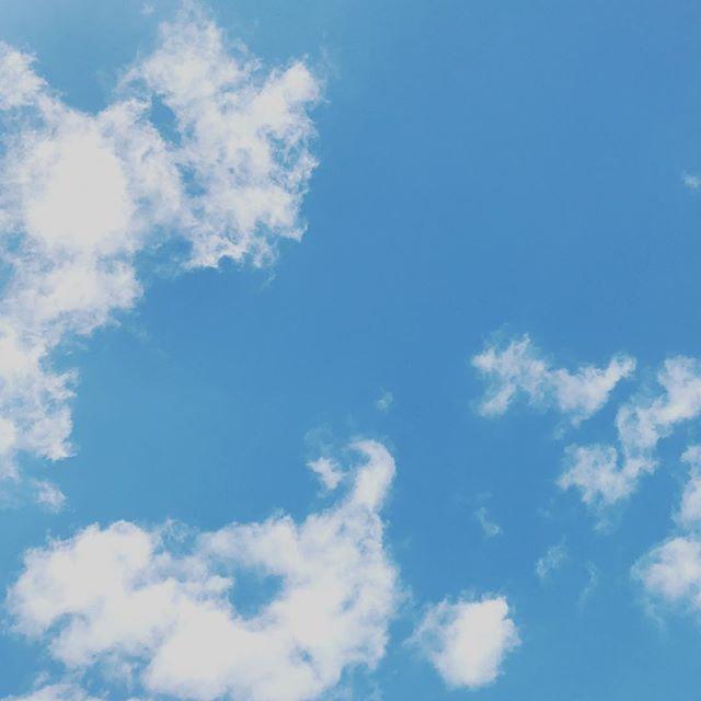 Loving Wednesday so far, blue skies make everything wonderful 💚 - - - #blueskies #melbourne #igersmelbourne #ilovemelbourne #carlton #thrive #healthylife #wintersky #natureisbeautiful