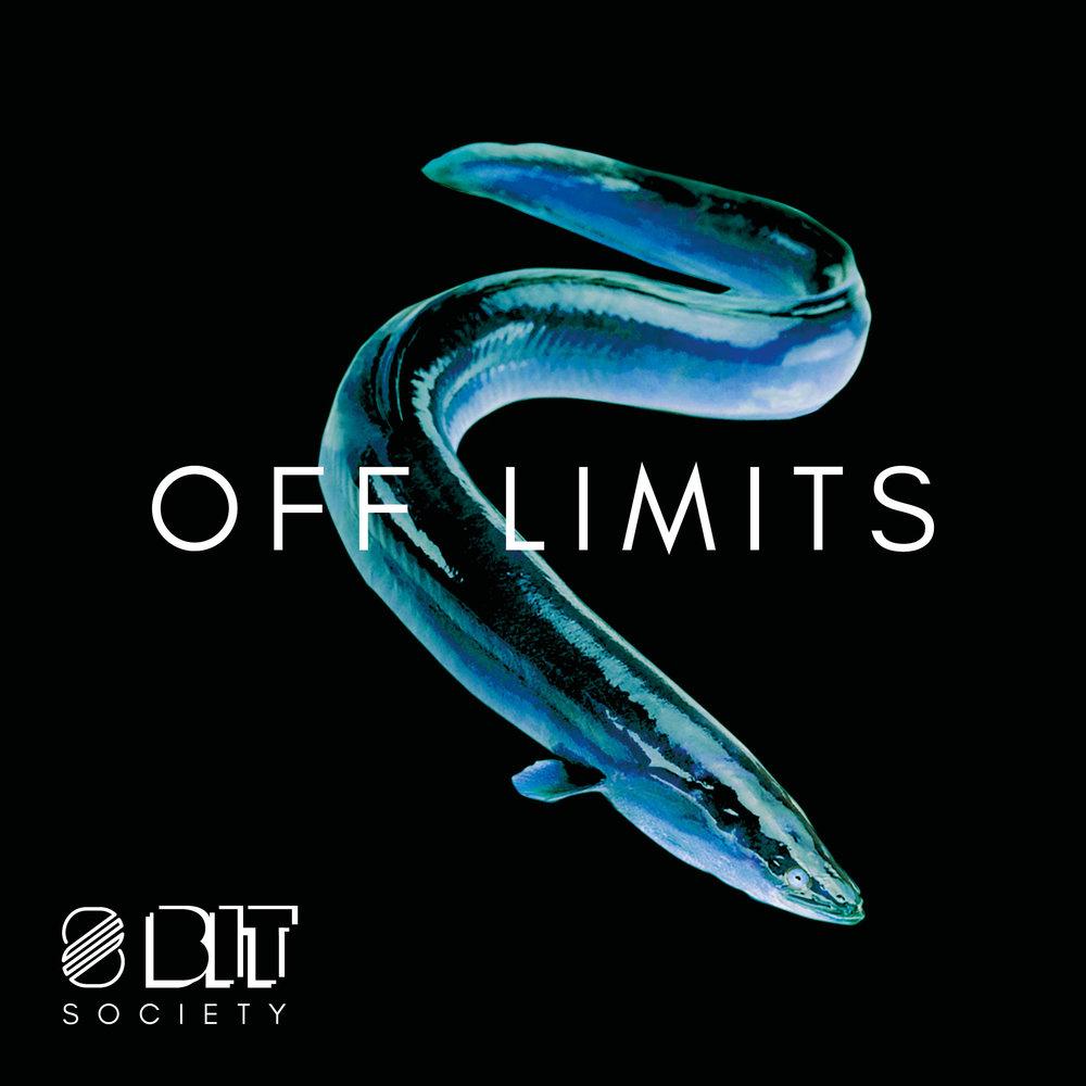 30x30_8Bit_Off_limits_F3.jpg