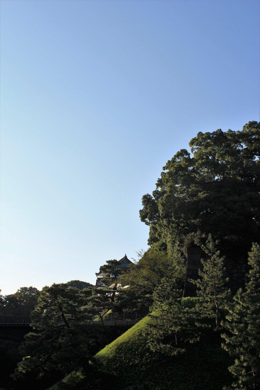 Emperial Gardens Tokyo