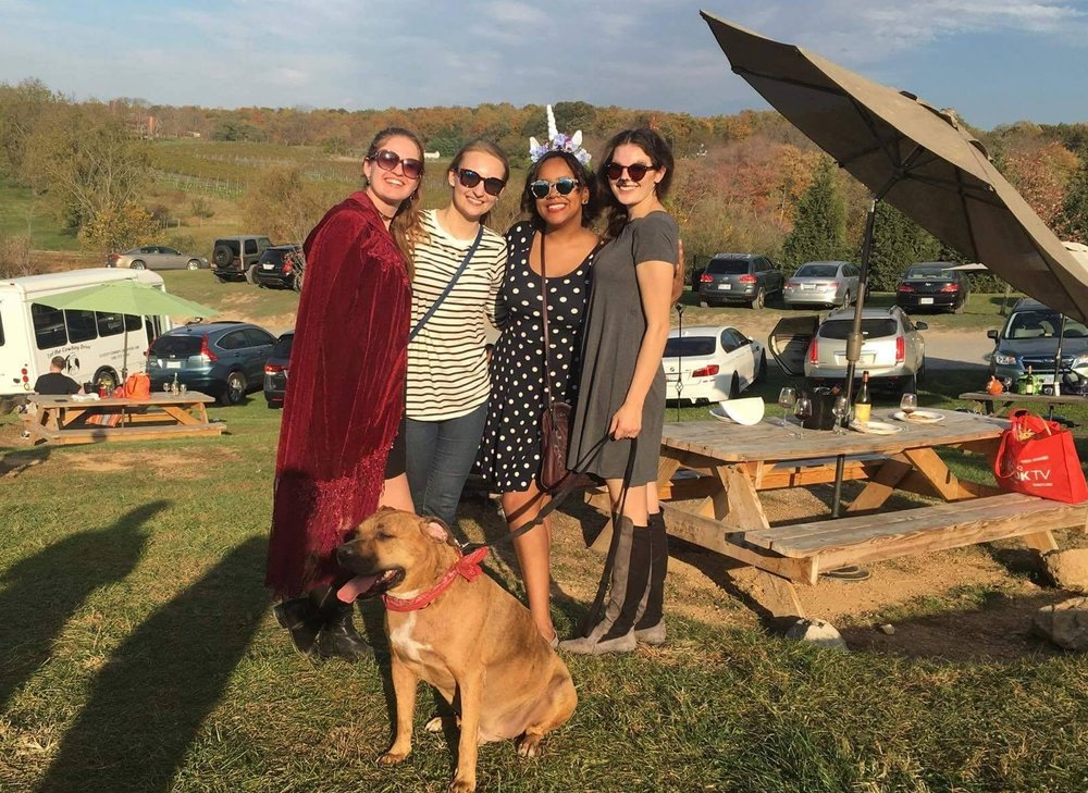 Virginia Wine Tasting with my DC BumbleBFFs !