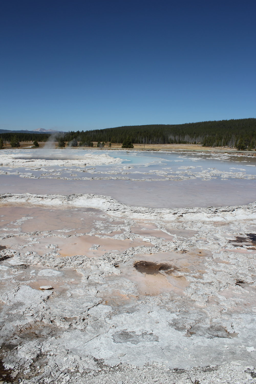 the hot springs and geysers of Yellowstone National Park