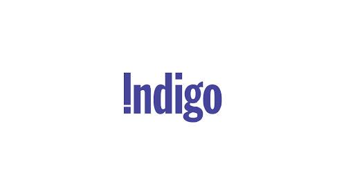 indigo-01.jpg