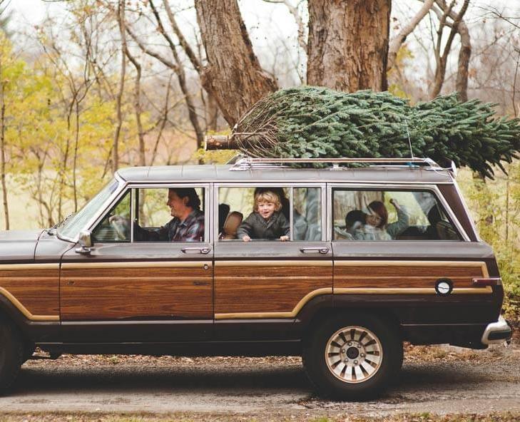 Christmas Tree Hull
