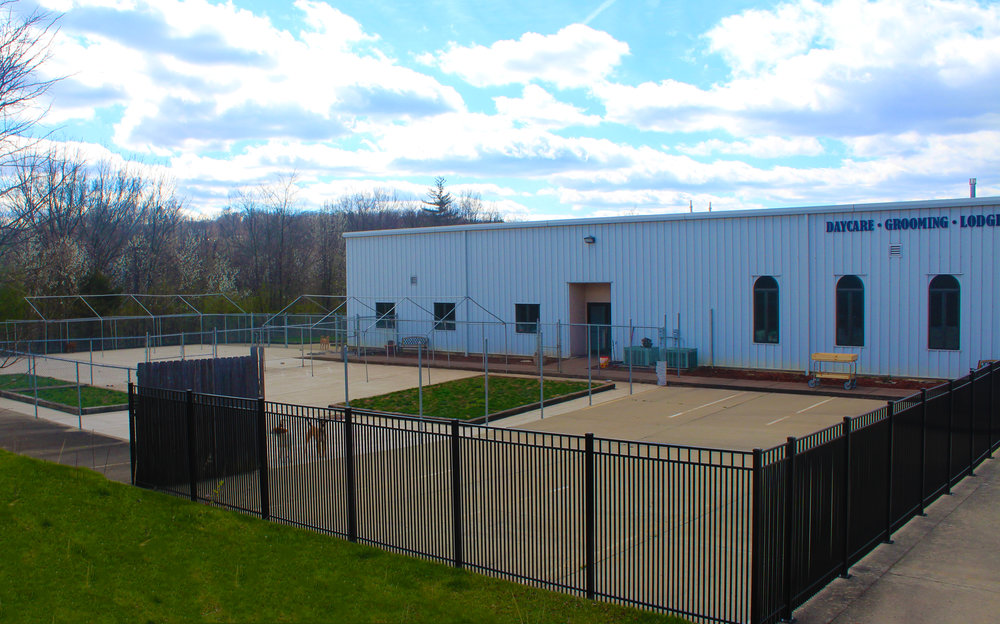 Pet Nation Lodge's Outdoor play areas combined are larger than most of the other boarding facilities entire buildings.  This allows us to get as many dogs outside and playing as we can.  Making sure that your dog gets the exercise they deserve.