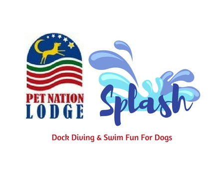 ALL NEW 22' x 41' outdoor pool! - Approved by DockDogs, Inc. as a sanctioned facility for official DockDog events. Everyone welcome! Fun for the entire family!Opening Memorial Weekend!  Check back for more details.