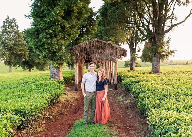 This weekend will make our 1 year mark of living in Kenya!! 🇰🇪 (Crazy, I know!!) We'll be sending out our email newsletter this weekend with highlights of our first year & what we've learned so far while living abroad. Link is in my profile if you want to sign up before it goes out! #markhamsonthemap