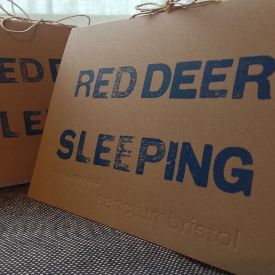 RedDeerSleepingSanctumProgrammeCloseUp.jpg