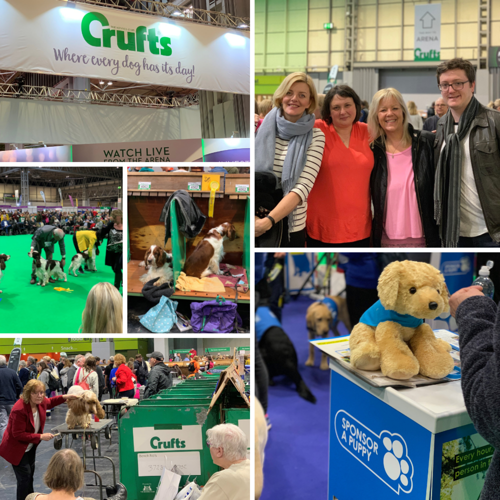 Crufts Montage.png