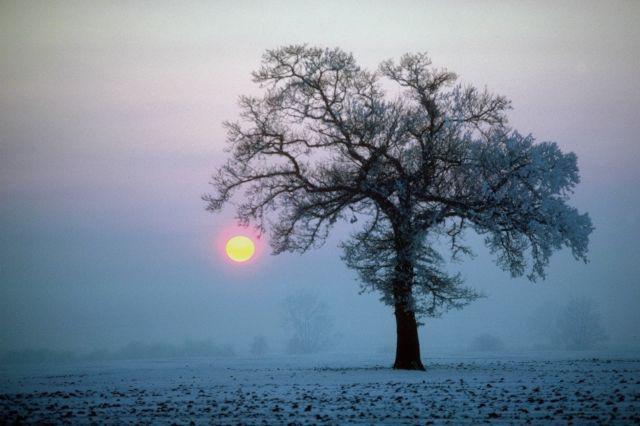 solstice17.jpg