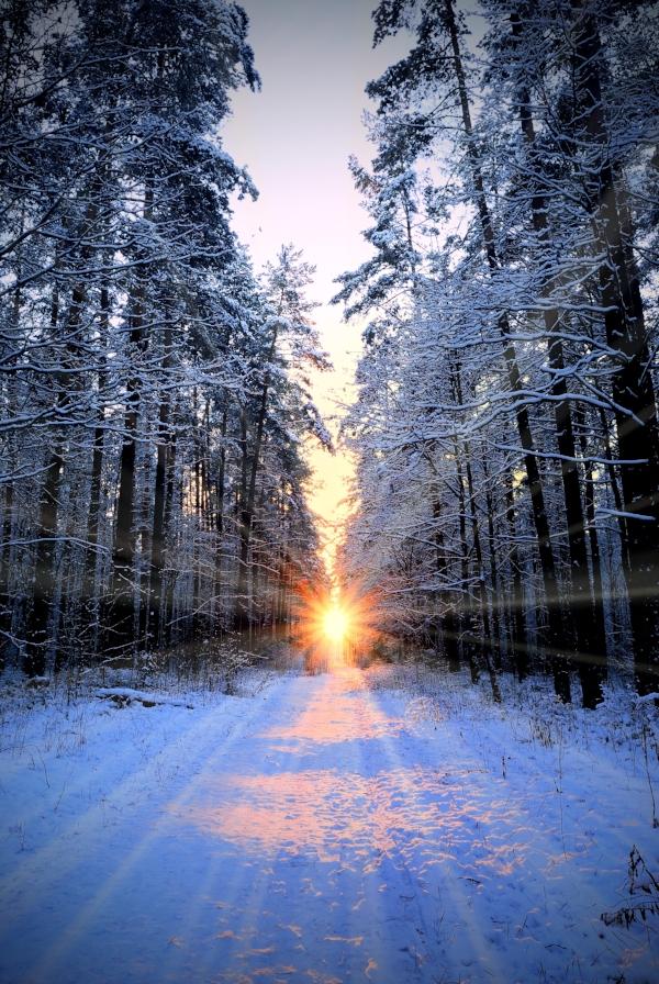 solstice9.jpg