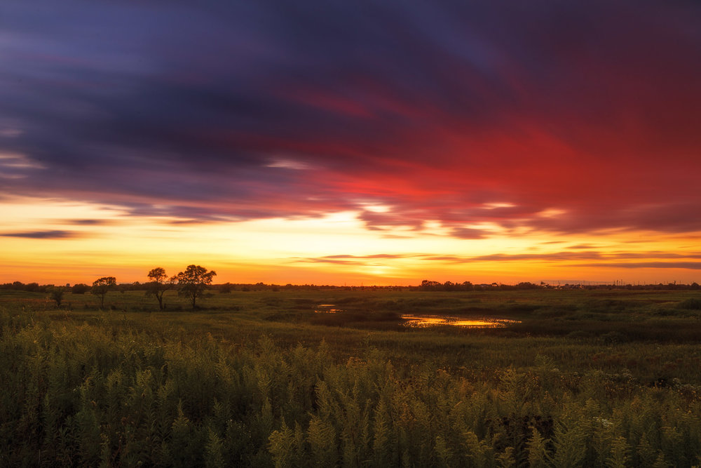 3 minute exposure for the sky combined with a fast shutter for the foreground grasses. Shot in the prairie of Illinois.