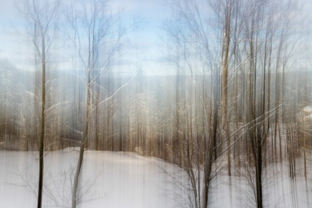 Wintry Panning wide_.jpg