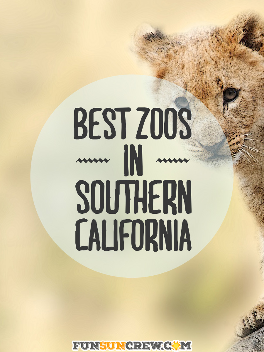 Best Zoos in Southern California - Our top 5 picks for family friendly adventures.