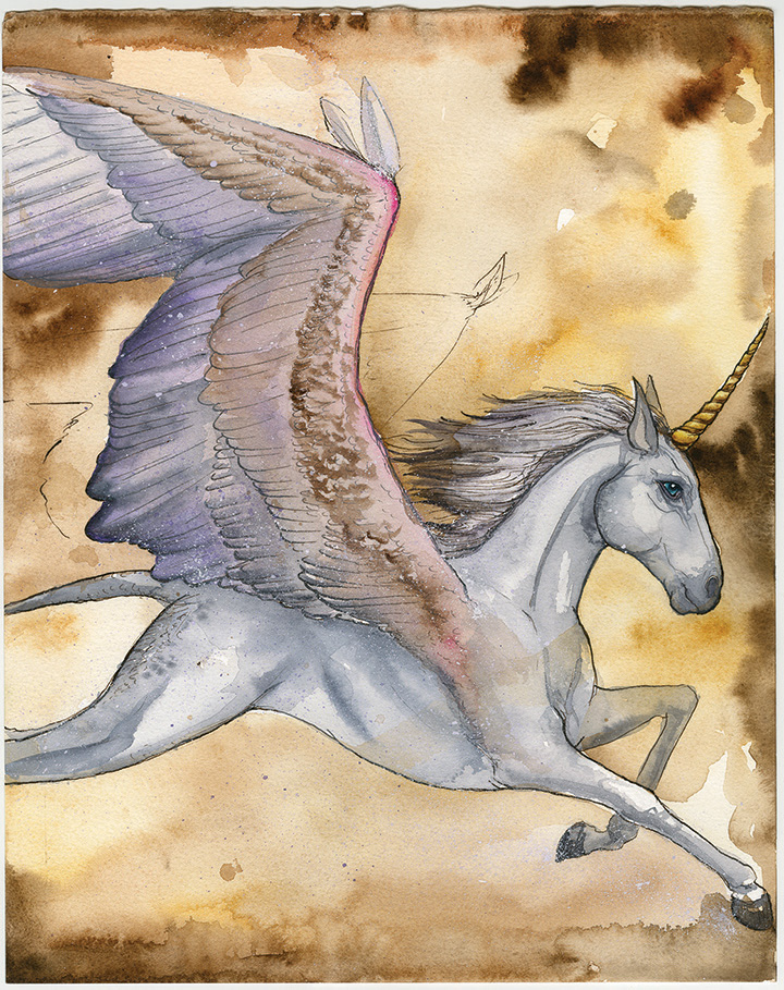 Alicorn Paired Only