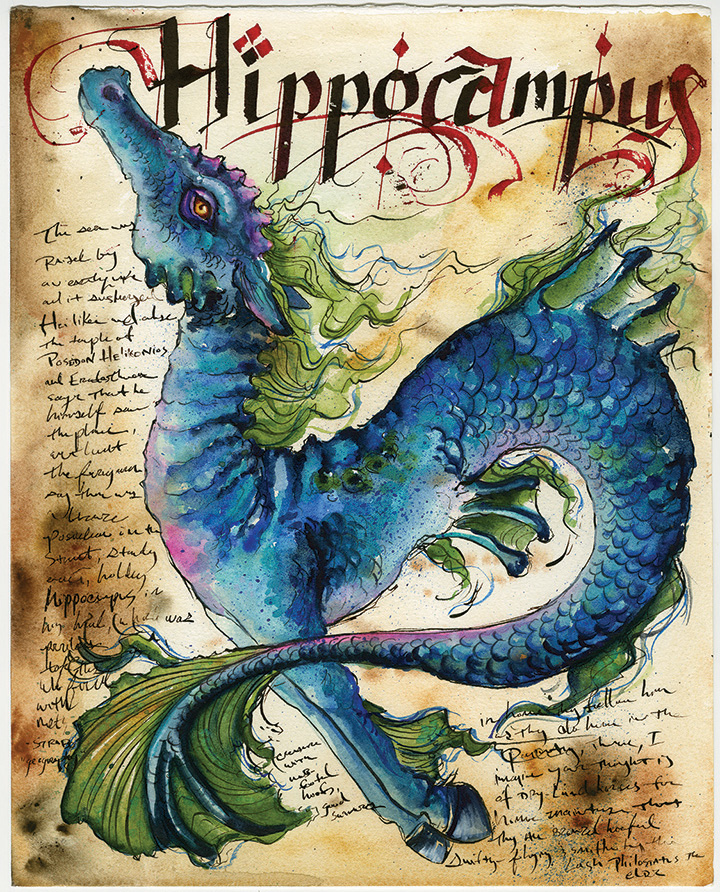 Hippocampus-ADOPTED